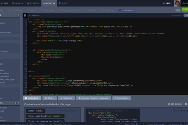 Zesty.io IDE Screenshot Example